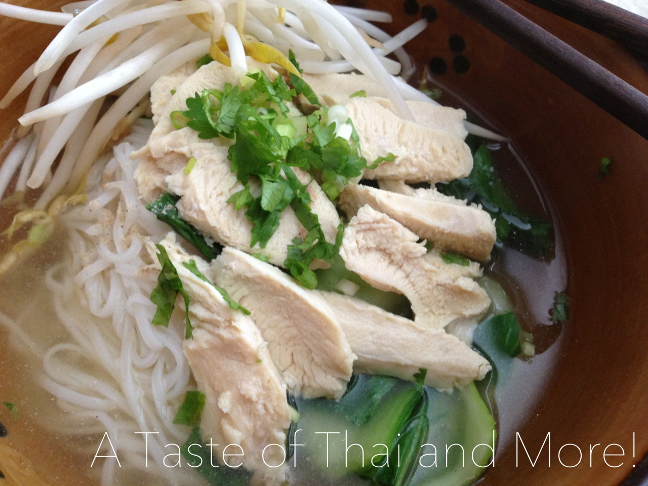 Thai Chicken Noodle Soup | A Taste of Thai and More!