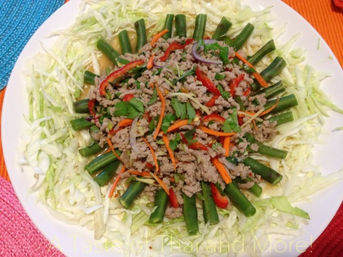 Thai Ground Chicken Salad With Ginger Nam Sod A Taste Of Thai And More